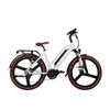 36v Battery Mid Drive Electric Bicycle Made in China